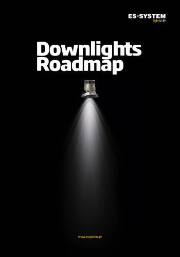 DOWNLIGHTS roadmap